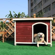 Are Igloo Dog Houses Warm Top 15 Best Dog Houses Reviews Best Top Care With Dogs