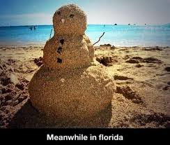 Funny Florida Memes - wtf florida humor on twitter meanwhile in florida wtf florida