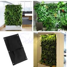 Wall Mounted Herb Garden by Compare Prices On Indoor Plant Walls Online Shopping Buy Low