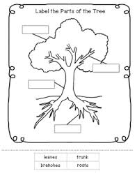 parts of a tree worksheet calleveryonedaveday