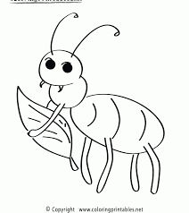 coloring pages insects bugs coloring pages insects free printable bug for kids throughout of and