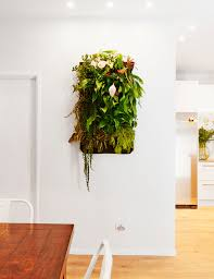 30 times an indoor plant added magic to an interior