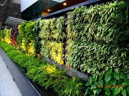 vertical garden concept for buildings greenwall vertical garden