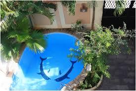 backyards stupendous modern clean line small backyard pool ideas