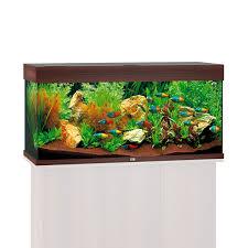 Gartenbank Selber Bauen Bauanleitung Aquarium Unterschrank Selber Bauen Ytong Bauanleitung Aquarium