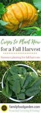 8116 best images about homesteading on pinterest