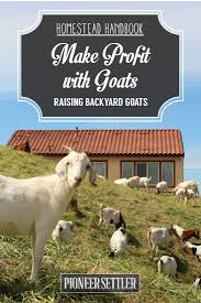 17 best images about farming on pinterest raising sheep and