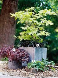 Shady Garden Ideas Stunning Shade Garden Design Ideas