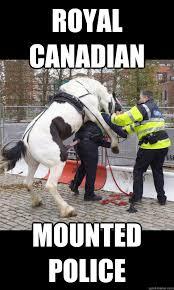 Funny Police Memes - anti police memes funny police best of the funny meme