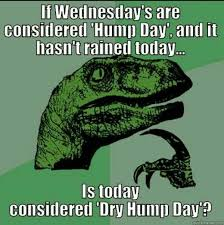 Dirty Hump Day Memes - 26 top happy hump day meme images and pictures quotesbae