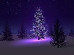 Christmas Trees With Lights Christmas Tree Xmas With Lights 1024x768 76270 Christmas Tree