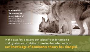 the dominance controversy dr yin