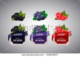 jam label stock images royalty free images vectors