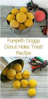 157 best fall fun with your dog images on pinterest fall puppy