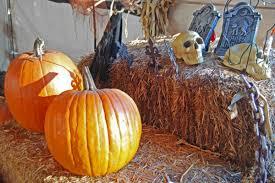 lots of chances for scary good halloween fun in santa barbara