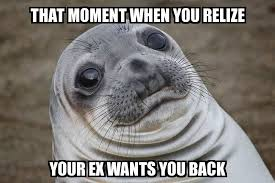 That Moment When Meme - awkward moment seal that moment when you relize your ex wants you