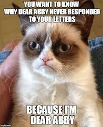 Abby Meme - grumpy cat meme imgflip