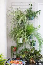 Hanging Plants For Patio Hang Plants From A Rack Great Small Space Patio Solution