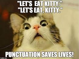 Punctuation Meme - punctuation saves lives jokes eskimi