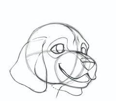 national dog day how to draw a dog face impact books
