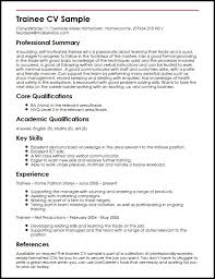Key Skills Examples For Resume by Cv Sample It Skills