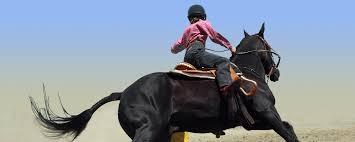 feeding the dressage horse part ii