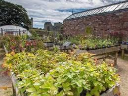 helmsley walled garden garden helmsley north yorkshire