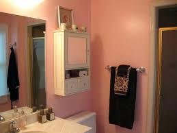 Pink Bathroom Storage Bathroom Cabinet Shelves Ikea Medicine Organizer Smart Inspiration