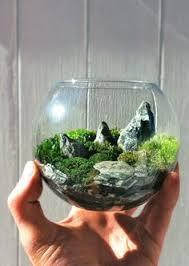 diy mini terrarium ideas terraria mini terrarium and lightbulb