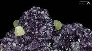 amethyst flowers properties and meaning photos crystal information