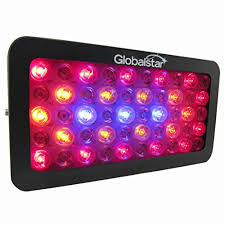 horticultural led grow lights ledgle led grow light 300w full spectrum uv ir plant grow l for