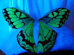 Blue And Green Butterfly - 624697 butterfly wings wallpapers