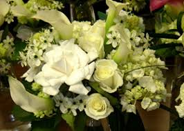 gardenia bouquet gardenia wedding flowers