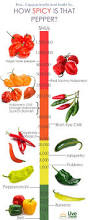 166 best chili peppers images on pinterest chili sauces and