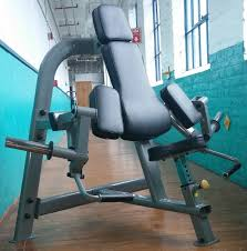 steelflex plbc biceps curl machine 749