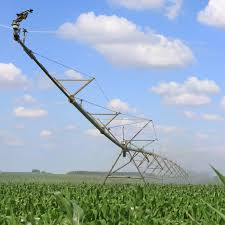 irrigated corn irrigation pays off for corn production agri benchmark