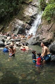 el yunque rainforest puerto rico hiking la mina trail and