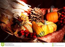 thanksgiving fall harvest stock photos royalty free pictures