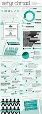 Infografic Resume Infographic Cv On Behance