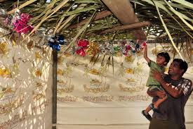 sukkah kits build a sukkah with your family pj library