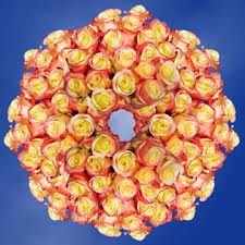 yellow roses with tips buy yellow with tip roses global