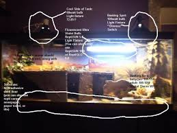 photo 3 of 6 image notice how the uvb amazing bearded dragon heat lamp at night 3