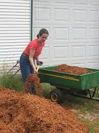Best Type Of Mulch For Vegetable Garden - what is hemlock mulch is hemlock mulch safe to use in gardens