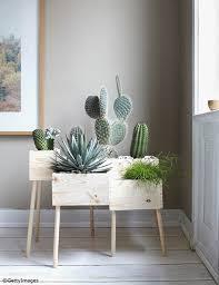 plante verte chambre à coucher plante verte chambre a coucher idée de maison