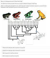 biology archive july 04 2017 chegg com