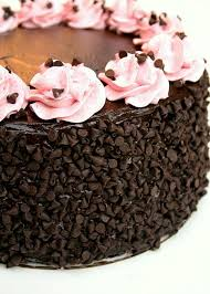 chocolate cake pictures u0026 decoration ideas for birthday parties