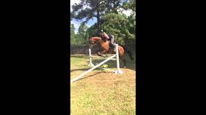quincey 8 15 jumping in backyard youtube