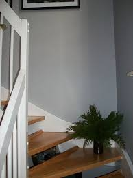 13 best paint images on pinterest dulux chic shadow stairs and