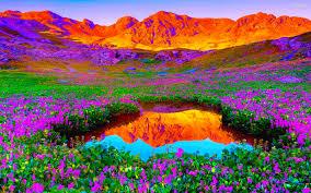 vibrant wallpaper vibrant desktop backgrounds google search fresh express sweet