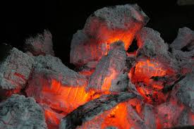 fresh what can fireplace ash be used for style home design modern